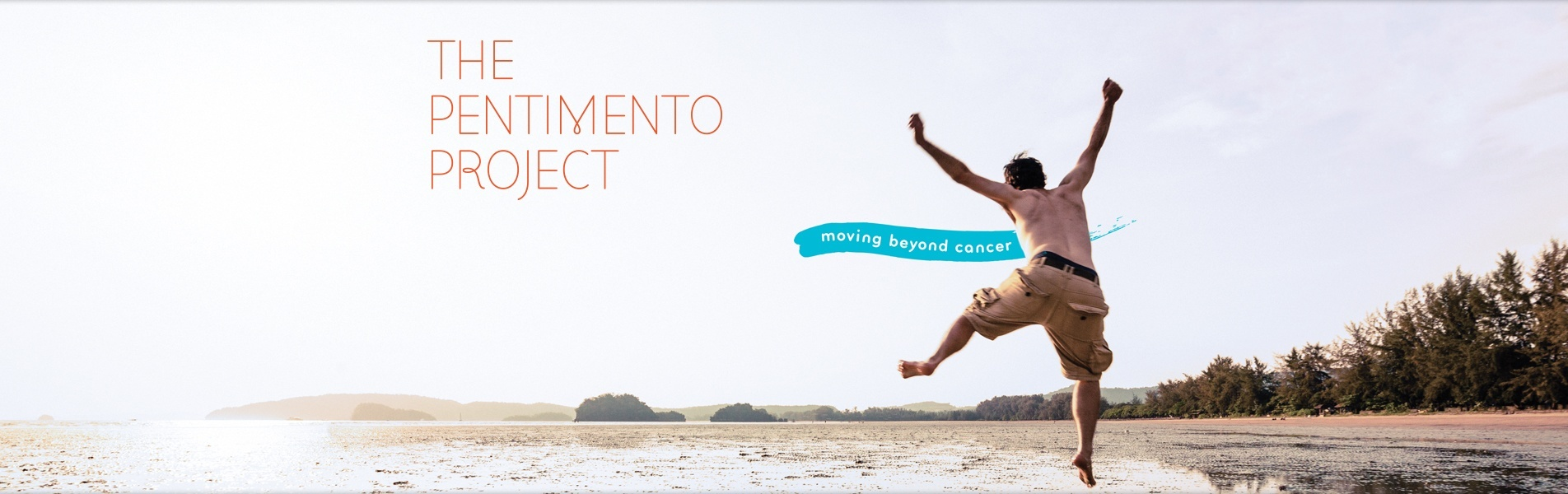The Pentimento Project
